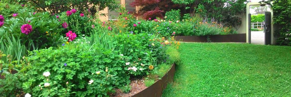 Realizziamo e Progettiamo Giardini  da oltre 20 anni